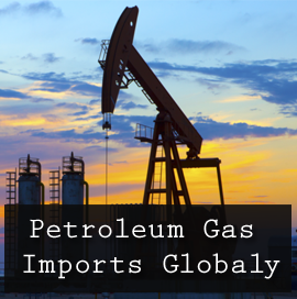 Petroleum Gas Imports