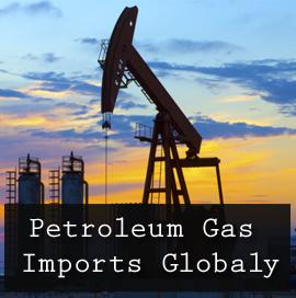 Petroleum Gas Imports