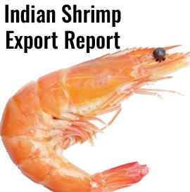 Indian Shrimp Exports