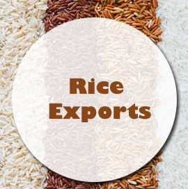 India Exports Rice