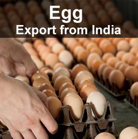 Egg Export Data