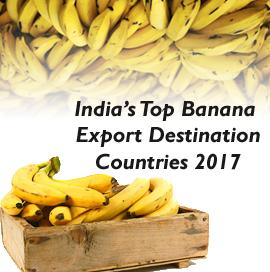 Banana Export from India