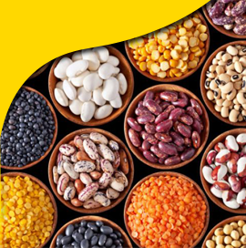 Pulses Import Data