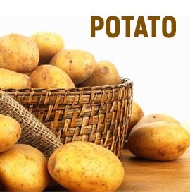Potato Suppliers in India