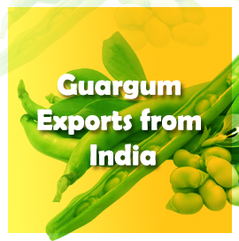 Guargum Export Data