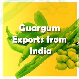 Guargum Export Data