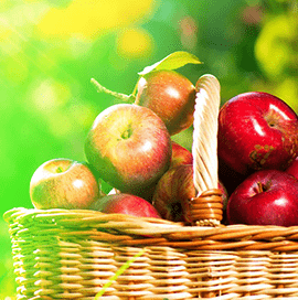 Vietnam Apple Fruit Import