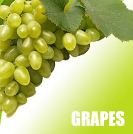 Grapes Import into Vietnam