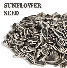 Kazakhstan Sunflower Seed Export