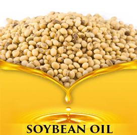Ukraine Soybean Exports