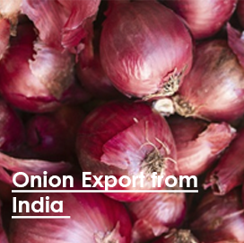 India Onion Export Data