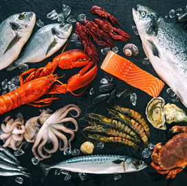 India Export Data of Seafood