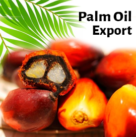 palm oil import export