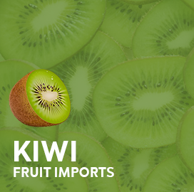 Kiwi Fruit Import Data