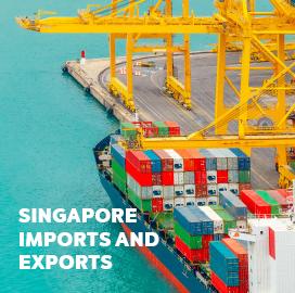 Singapore Trade Data