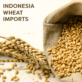 Indonesia Import Data