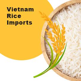 Vietnam Import Data