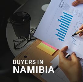 Namibia Import Data