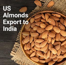 USA Export Data
