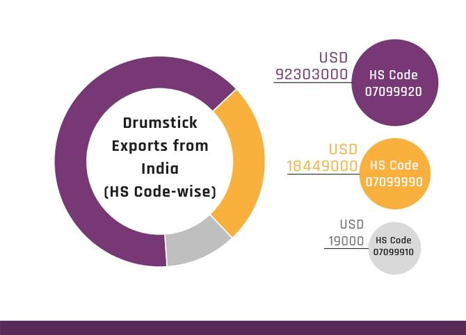 Drumstick Exports