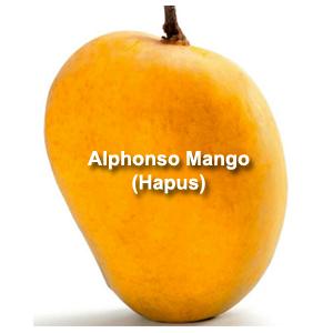 Top 7 Most Famous Export Varieties of Mango in India