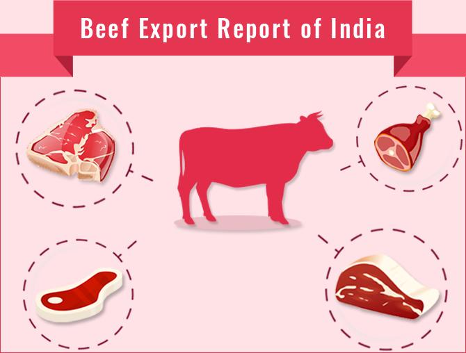 Beef Export Report