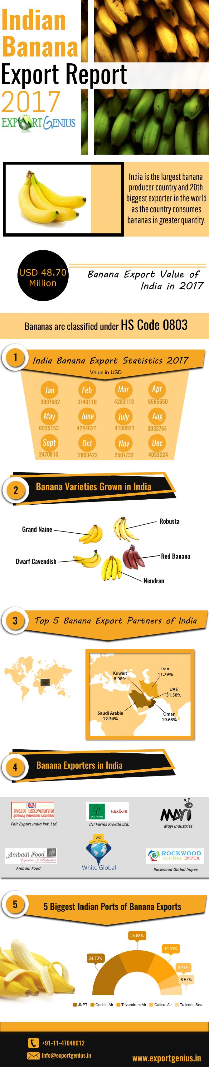 Banana Export Infographic