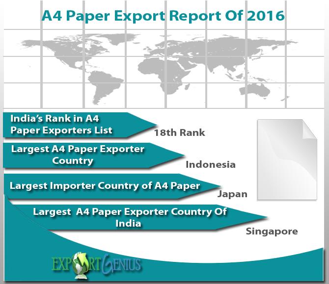 Paper Export Report