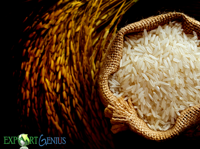 Rice Importers in Indonesia
