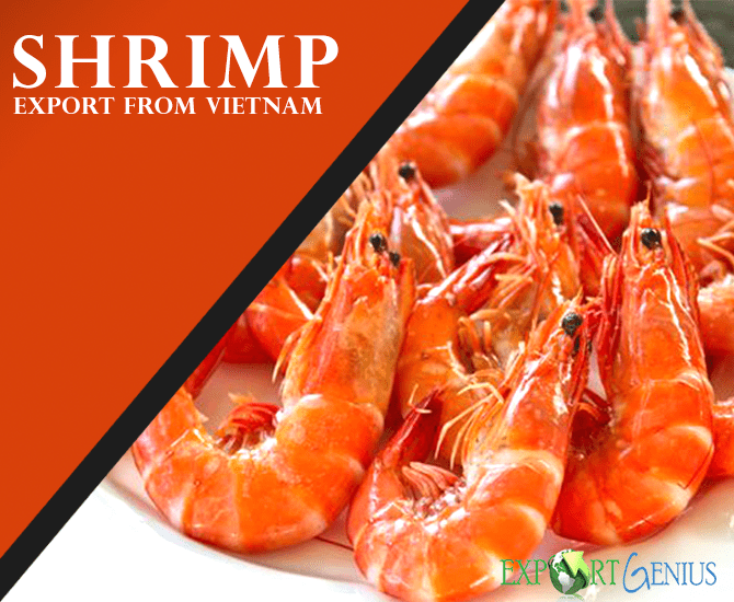 Vietnam Shrimp Export