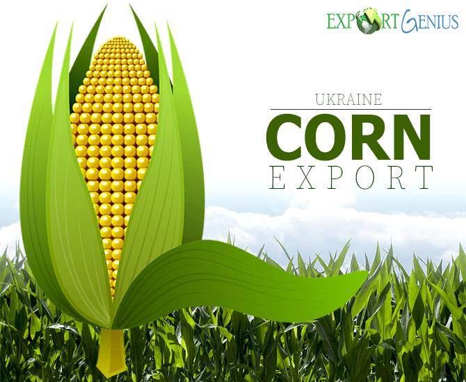 Ukraine Corn Exports