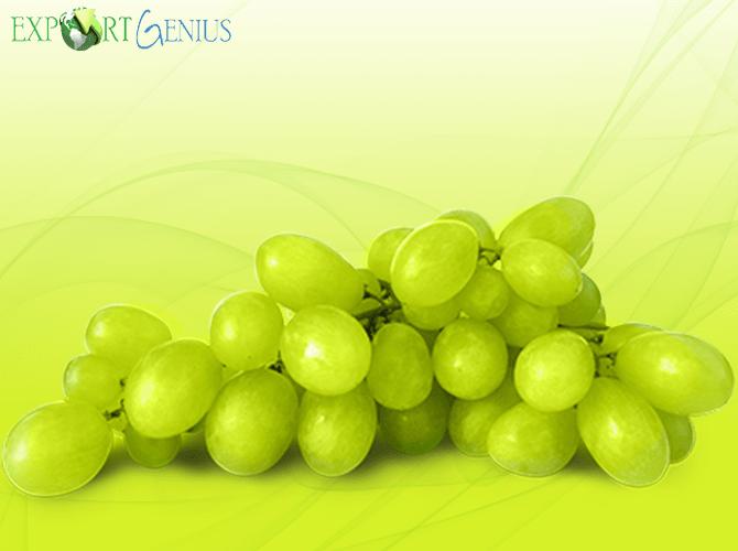 Grapes Import into Vietnam