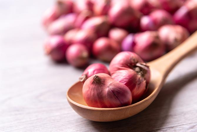 India Onion Export Data