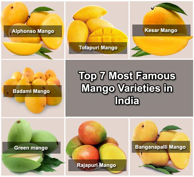 varieties of mango