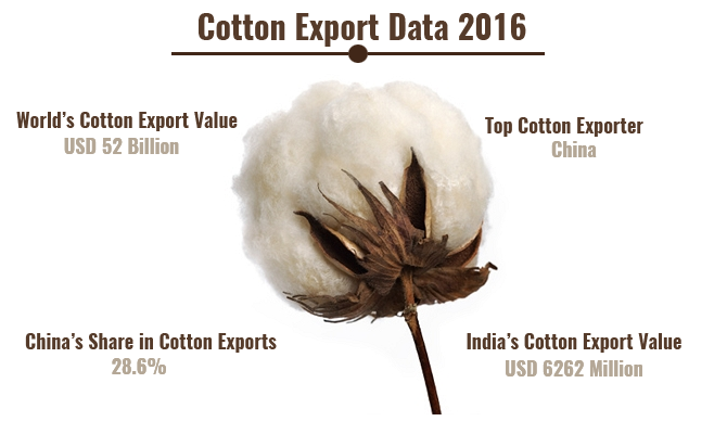Cotton Export Data