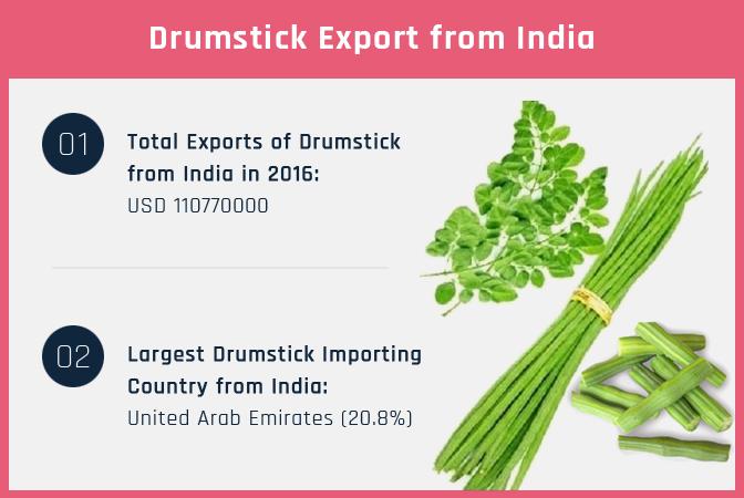 Drumstick Export
