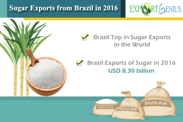 Cane Sugar Exports from Brazil in 2016 - Sugar Export Data and Report
